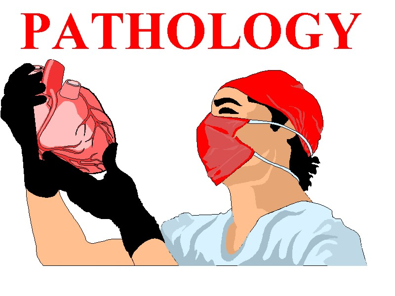 pathology cases for mansoura exams 2009